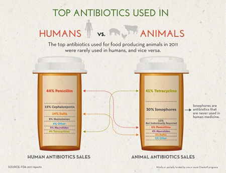 Top antibiotics used_082014.jpg